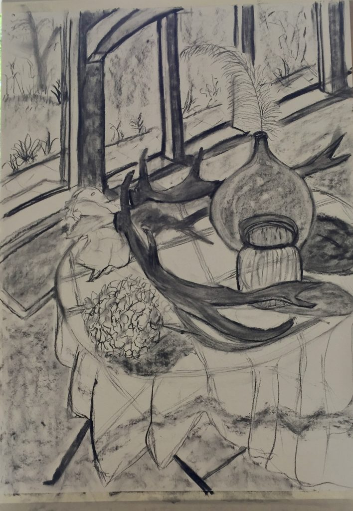 drawing from still life